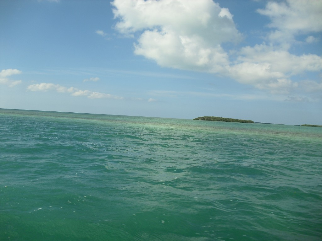 An Island and a shoal