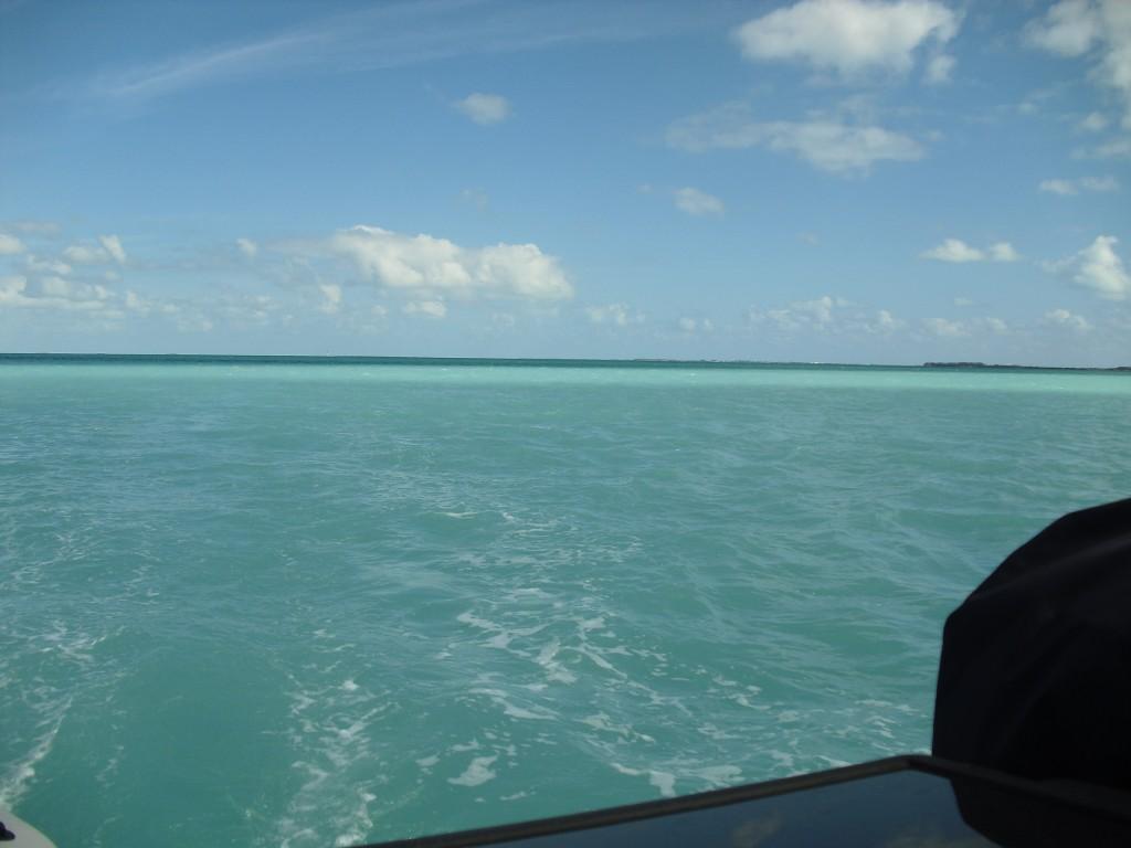 Suck beautiful water in the Keys